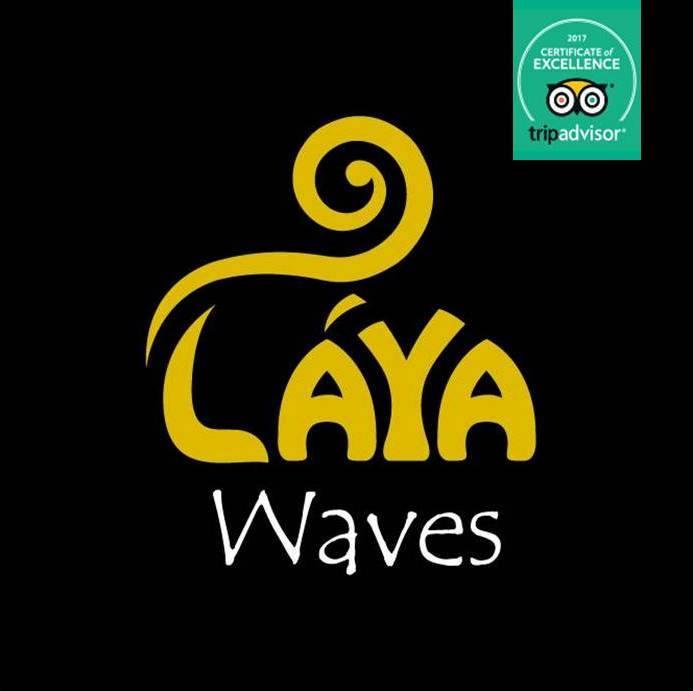 Laya Waves