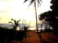 Balapitiya Beach Hostel Balapitiya Hotel Photo